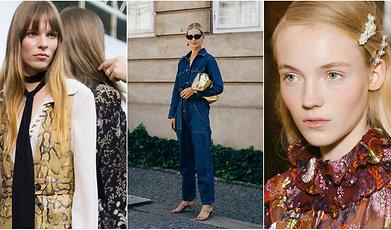 Mode, Trend, Höst